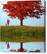 Discovering Autumn - Reflection Acrylic Print