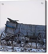 Discovery From The Past Acrylic Print