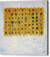 Display 5 Acrylic Print