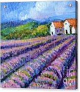 Distant  Houses And Lavender Fields Acrylic Print