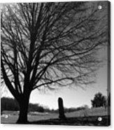 Distant Memories Acrylic Print
