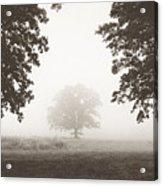 Distant Silence Acrylic Print