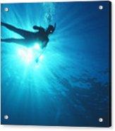 Diver On Mahi Wreck Acrylic Print by Bob Abraham - Printscapes