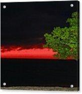 Divi Divi Night Acrylic Print