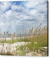 Divine Beach Day Special Crop Acrylic Print