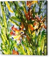 Divine Blooms-21061 Acrylic Print