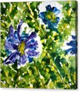 Divine Blooms-21165 Acrylic Print