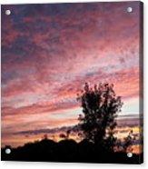 Divine Dawn Acrylic Print