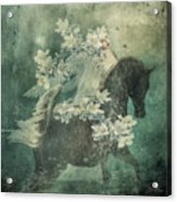 Divine Horse Whisperer Acrylic Print