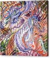 Dizzy Feathers Acrylic Print