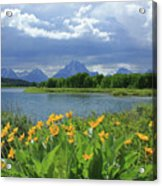 Dm9235 Mt. Moran From Oxbow Bend Acrylic Print