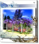 Do-00013 Wisteria Branches Acrylic Print