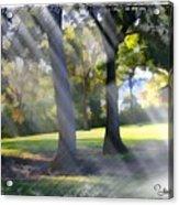 Do-00017 Point Frederic Acrylic Print