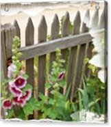 Do-00099 Fence-flowers Acrylic Print