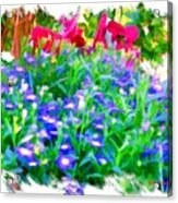 Do-00221 Flowers Acrylic Print
