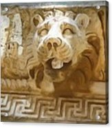 Do-00313 Lion Water Feature Acrylic Print