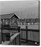 Dock At Mandarin Park Black And White Acrylic Print