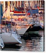 Docked Yatchs Acrylic Print by Carlos Caetano