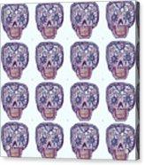 Dod Art 123ppg Acrylic Print