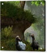 Dodos In The Forest Acrylic Print