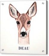 Doe Deer Acrylic Print
