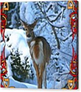 Doe In The Snow Acrylic Print