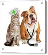 Dog And Cat Veterinarian And Nurse Acrylic Print