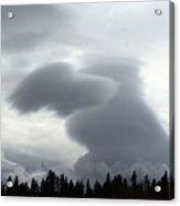 Dog Cloud Acrylic Print