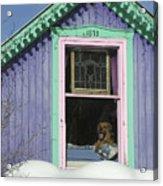 Dog Days Of Winter Acrylic Print