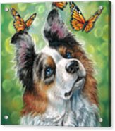 Dog With Butterflies Acrylic Print