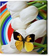 Dogface Butterfly On White Tulips Acrylic Print by Garry Gay
