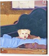 Doggy In The Guitar Case Acrylic Print