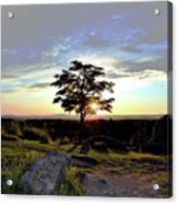 Dogwood On Little Round Top Acrylic Print