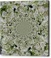 Doily Of Flowers Acrylic Print