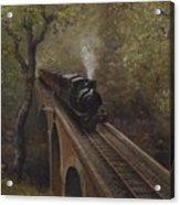 Dolgoch Viaduct Acrylic Print