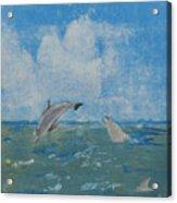 Dolphin Frolic Acrylic Print