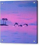Dolphin Island Acrylic Print