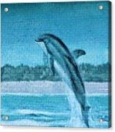 Dolphin Mural Acrylic Print