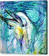 Dolphin Smile Acrylic Print