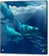 Dolphin World Acrylic Print by Corey Ford