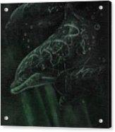 Dolphins 2 Acrylic Print