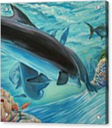 Dolphins At Play Acrylic Print