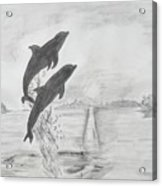 Dolphins Of The Sea Acrylic Print