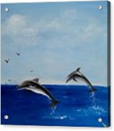Dolphins Playing Acrylic Print
