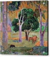 Dominican Landscape Acrylic Print by Paul Gauguin