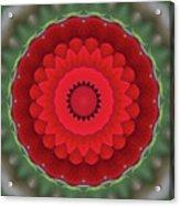 Don Juan Kaleidoscope Carnation Acrylic Print