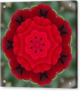 Don Juan Rose Poppies Kaleidoscope Acrylic Print