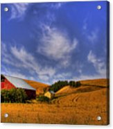 Done With Harvest Acrylic Print