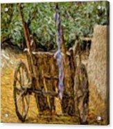 Donkey Cart Acrylic Print
