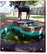 Donkey Fountain Acrylic Print